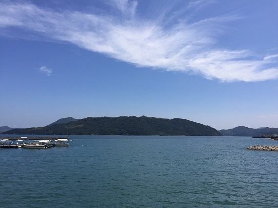 大三島の香りが直感を刺激する